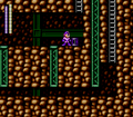 Megaman3WW can06.png