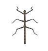 ACWW Walkingstick.png