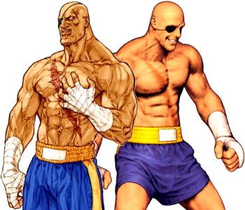 Capcom Vs Snk Characters Sagat Strategywiki The Video