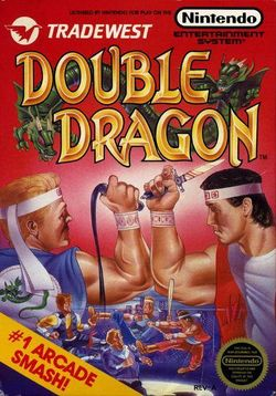 Box artwork for Double Dragon.