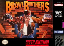Box artwork for Brawl Brothers.