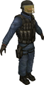 Css ct gign.png
